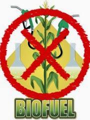 no_biofuels