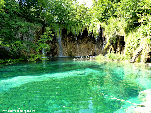 aguas-turquesas-en-los-lagos-de-plitvice.JPG