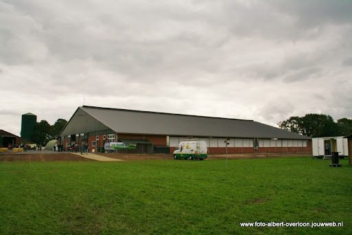 koeien kijken boer martij 18-06-2011 (20).JPG