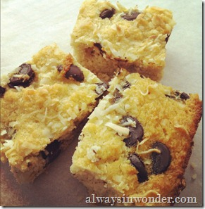 grain_free_coconut_bars
