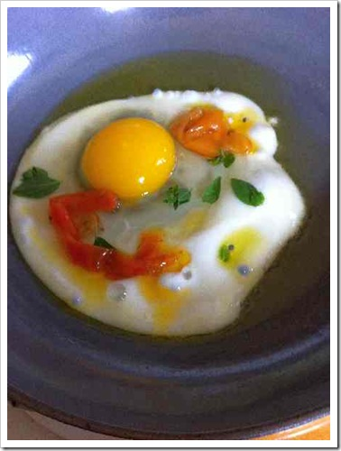 use egg 3