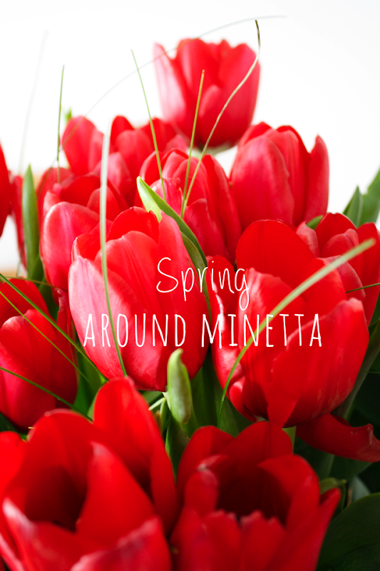 Spring around Minetta