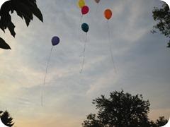 Boise Balloons 2012 (2)