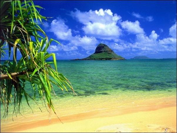 هاواي1