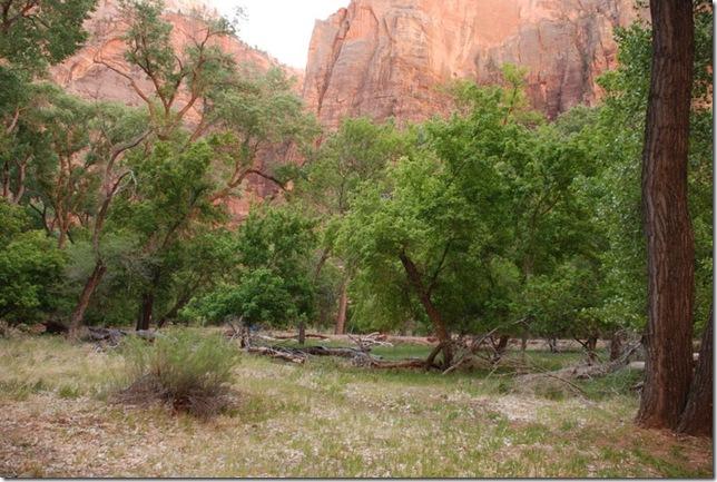 05-02-13 A Ride with a Range thru Zion Canyon 049