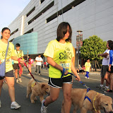 Pet Express Doggie Run 2012 Philippines. Jpg (137).JPG