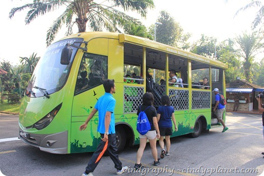 SkyTrex Shuttle Bus