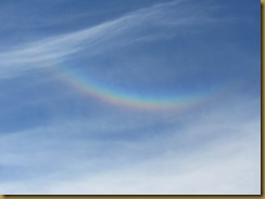 IMG_2057 Rainbow