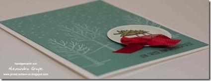 stampin-up_white-christmas_weiße-Weihnacht_weihnachten_lagunenblau_glutrot_alexandra-grape_03