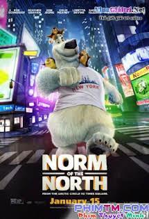 Đầu Gấu Bắc Cực - Norm Of The North