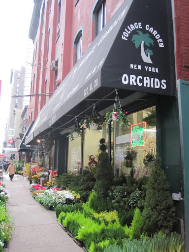 For my dinner party, I bought my orchids at Foliage Garden on 28th Street.