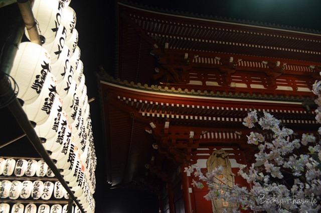 2013-04-27 Tokyo 044