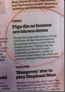 a98655_headline_11-pigs