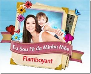 Promoção Mamãe Flamboyant