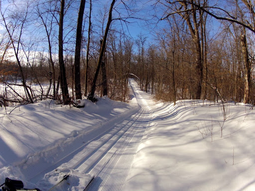 Fresh track on Wavy Gravy trail today