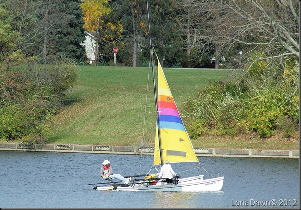 Saltfork_Lake_Sailboat