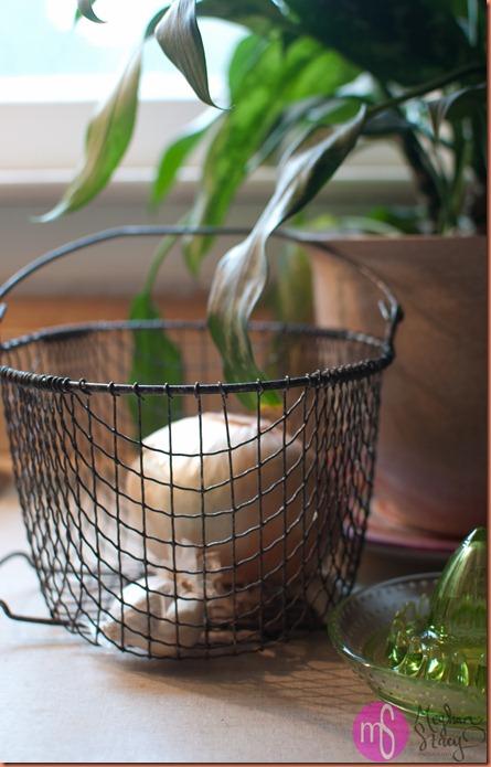basket 001
