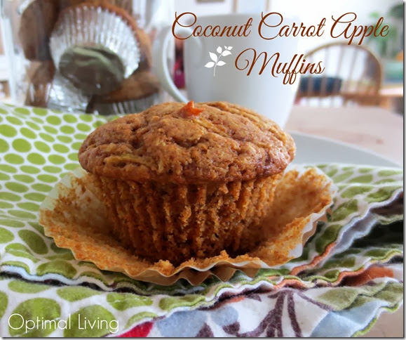 cocnut apple carro muffins 2