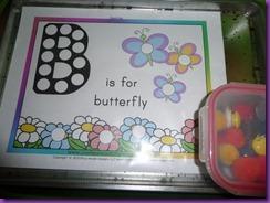 butterflies 013