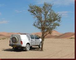 Sossusflei-Dunes-Nov-2011-(48)-for-web