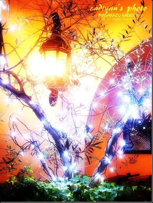 E-PL1_2012-10-18_023