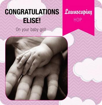 Elise Baby