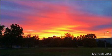Sunset 11042014