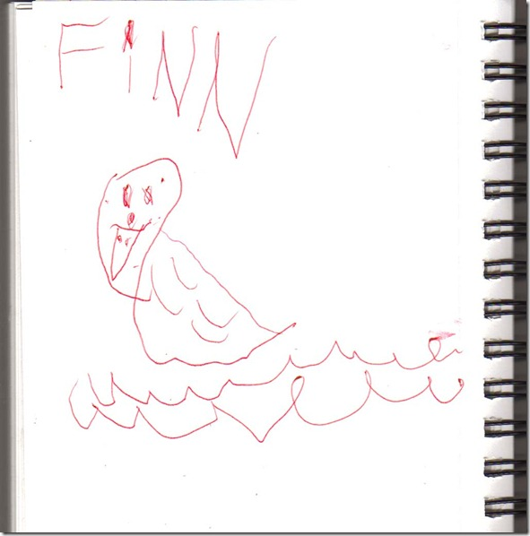 bird-finn