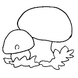 champignon-(9).jpg