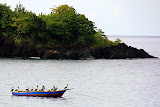 A Gang of Pelicans Awaits The Day's Fish Catch - St. George's, Grenada