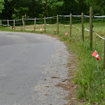 PIH Ridestævne 21062014 KM 175.JPG
