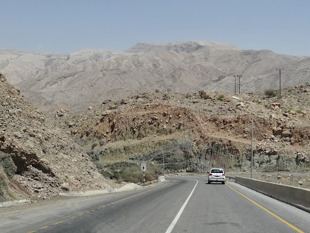 01. Sosea in Oman.JPG