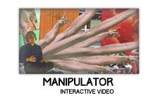Ty Segall - Manipulator