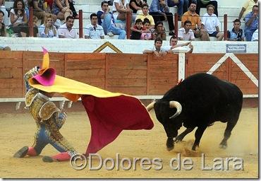 ©Dolores de Lara (20)