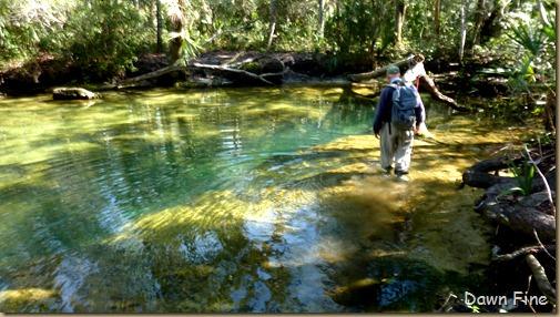 Chassahowitza River canoeing_075