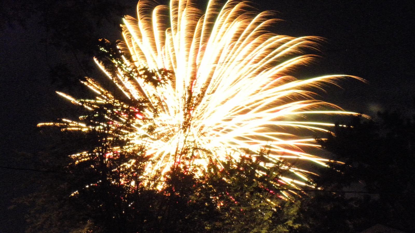 [Fireworks%2520Neighborhood%2520July%25202%252011%2520%25287%2529compressed%255B2%255D.jpg]