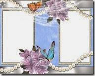 PNG frame (29)