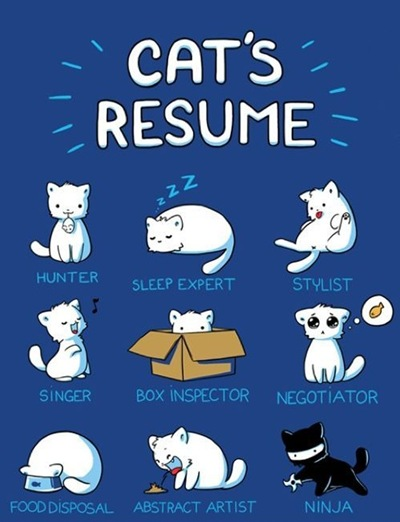 Cats-resume