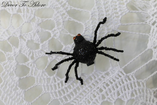 spider 005-002