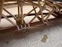 puente_07.JPG
