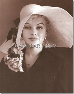 Marilyn Monroe (21)