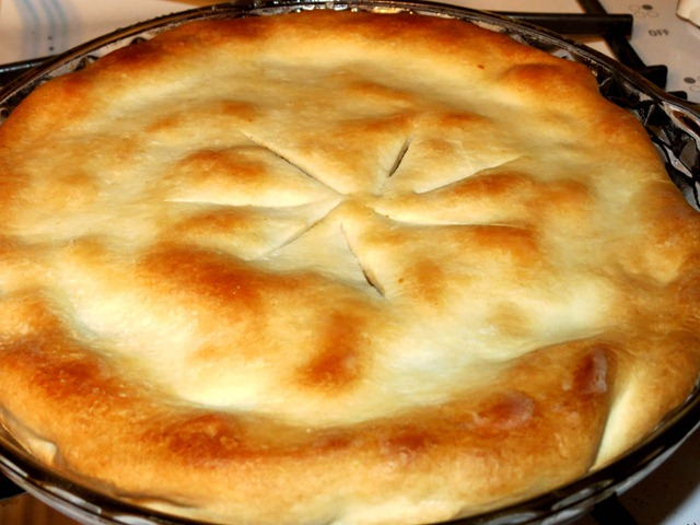 beef pot pie fast cheap and easy3
