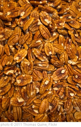 'Pecans' photo (c) 2011, Thomas Quine - license: http://creativecommons.org/licenses/by/2.0/