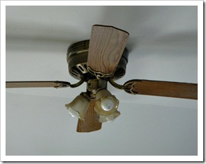 Ceiling Fan Before (2)