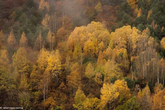 La vall de Boi. La Vall de Boi, Alta Ribagorca, Lleida