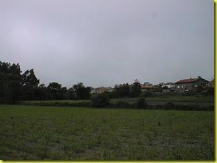 PIC00016