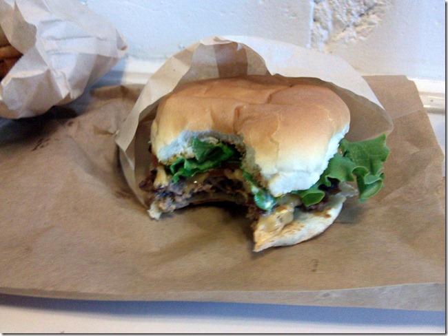 burger (15)