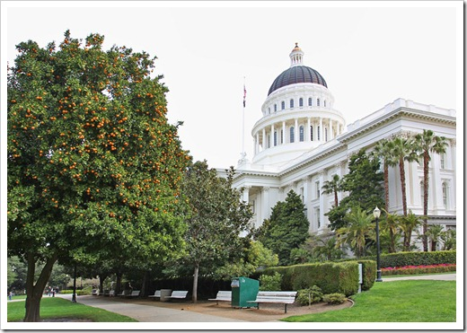 120317_Capitol_Park_236