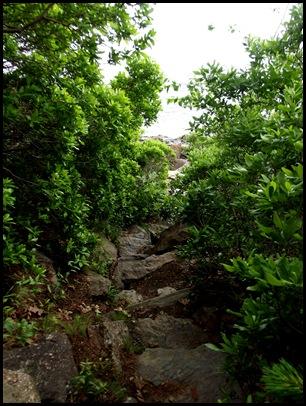 Ocean hike Camden Hills 011