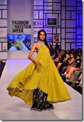 Pakistan's third fashion week FPW 3 201213